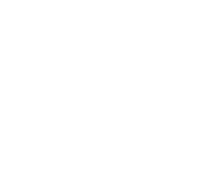 NOISE Activation Agency