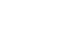 NoProtocol Digital Production